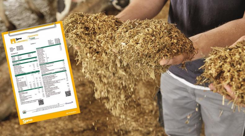 Laborbericht Sano Labor verstehen - Landwirt begutachtet Futtermittel