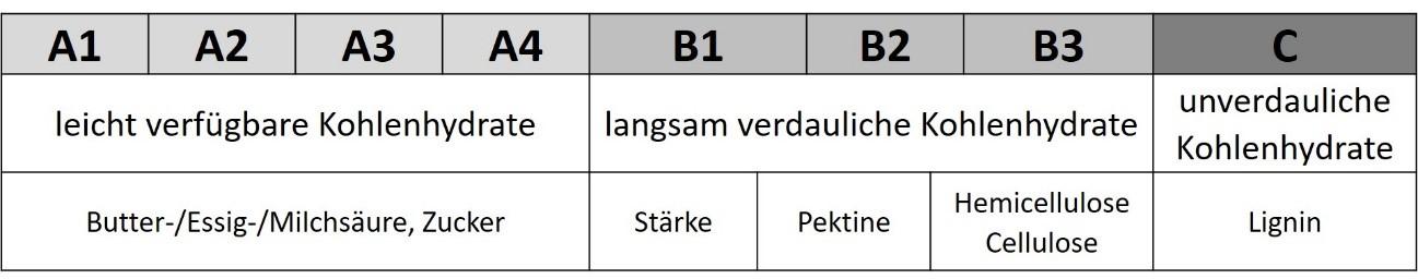 Tabelle Faser - Sano