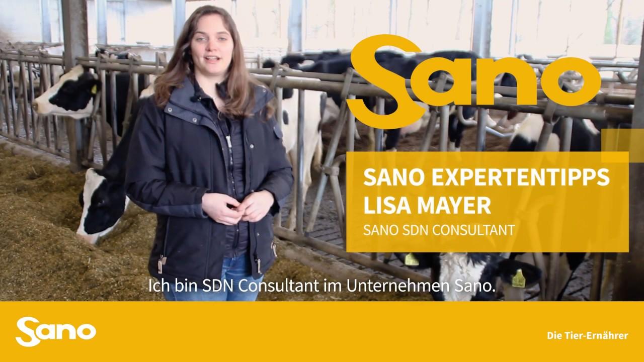 YouTube Vorschaubild für Sano Expertentipps - CNCPS